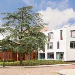 Particulier-verzorgingshuis-Haarlem-Martha-Flora
