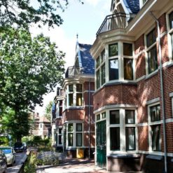 Ridderspoor, King Arthur, Hilversum